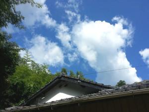 2013.kagoshima3