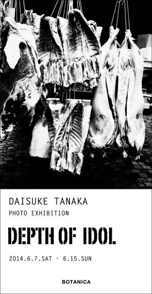 daisuke tanaka exhibition at botanica1