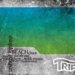 dj kou / TRIP