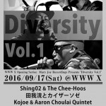 "WWW X Opening Series Mary Joy Recordings Presents ""Diversity Vol. 1"""