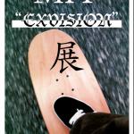 "MIT ""EXVISION""展 at FESN laboratory"