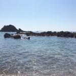 夏休み / TRACING THE ROOTS